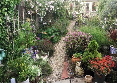 garden-flowers-michael-lilley-mayor-ryde-isle-of-wight