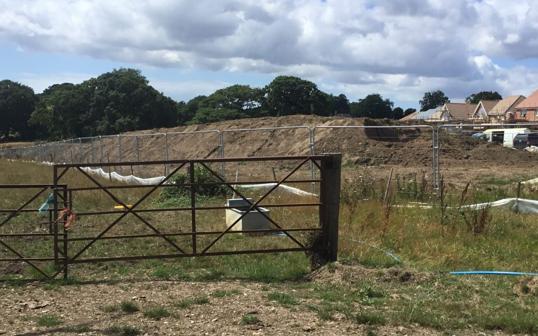 Stop Large Housing Developments in East Wight to Prevent an Environmental Crisis!